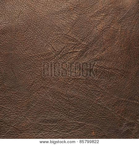 Brown leather material fragment