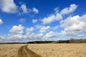 stock photo of steppes  - Rut road in steppe under nice clouds in sky - JPG