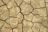 picture of drought  - Brown Drought land closeup pattern background texture - JPG