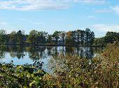 pic of bohemia  - view landscape ponds - JPG