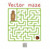 picture of marmot  - Vector Maze - JPG