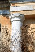 foto of academia  - fragment of ancient column of a historic building close - JPG