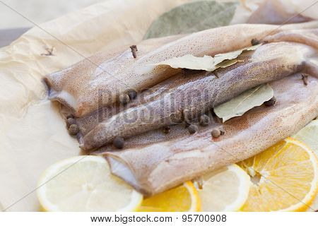 Fresh squid carcass with spices on paper on the wooden table