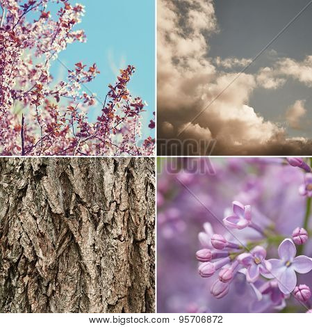 Nature Background Collage