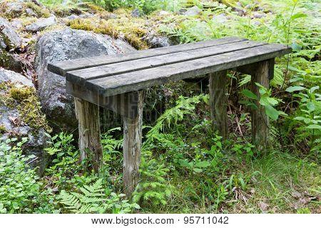 Worn Wooden Bench In Forest