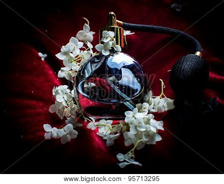 Perfume And Flowers Of Hydrangeas On A Black Background