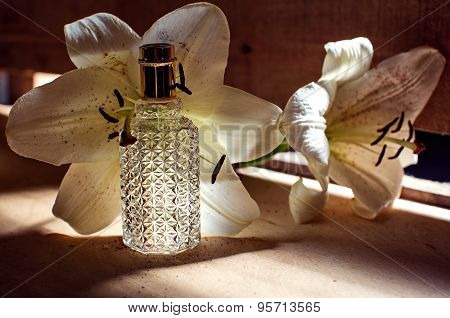 Perfume And Orchid