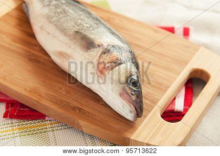 Fresh Raw Fish