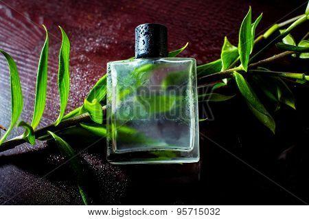 man parfume