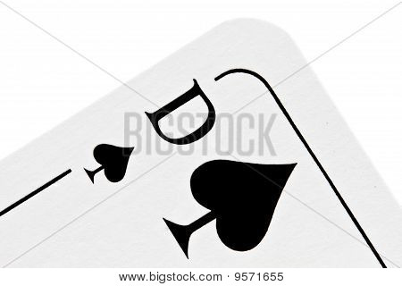 Queen Of Spades Isolated On White