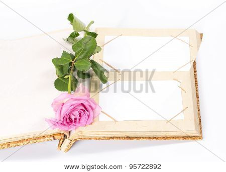 open photo album book with rose