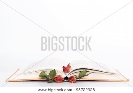 isolated open book with withered roses. side view.
