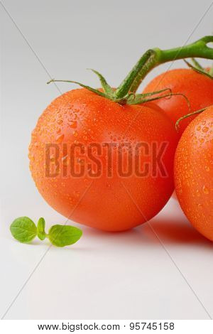 close up of washed tomatoes on white background