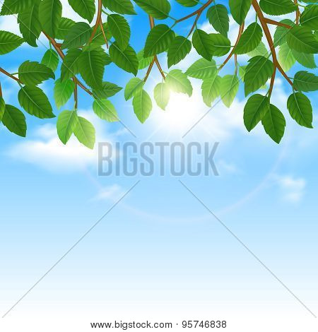 Green leaves and sky background border