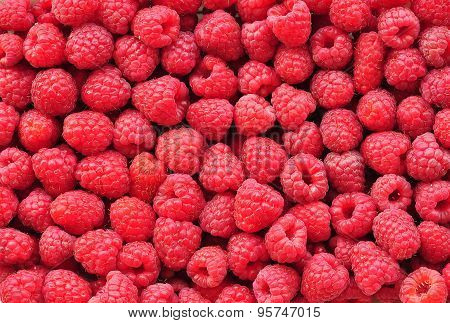 organic fresh raspberries background