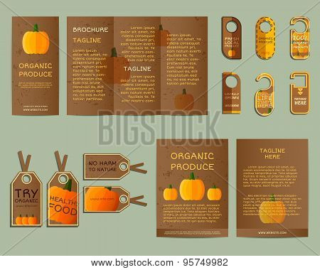 Natural business corporate identity design with pumpkin. Branding your organic company. Brochure. Mo