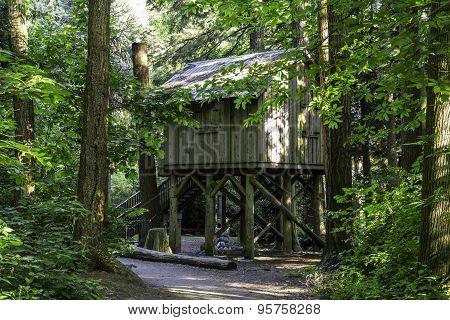 Old Log CabinhHome