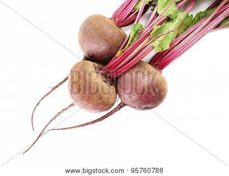 Fresh beet isolated on white