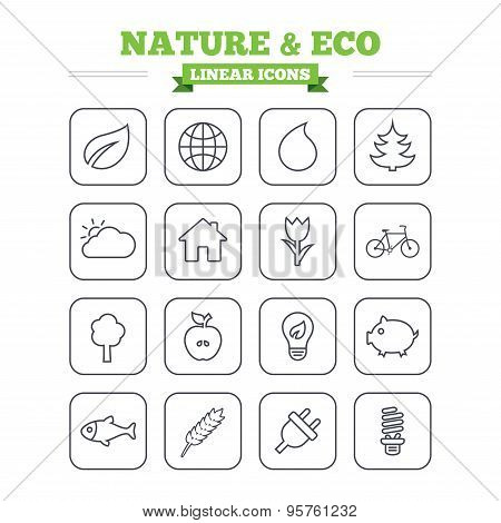 Nature and Eco linear icons set. Thin outline signs. Vector