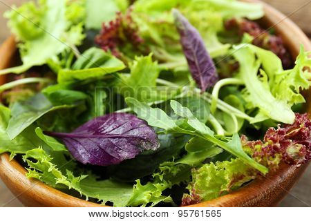 Fresh mixed green salad in bowl close up