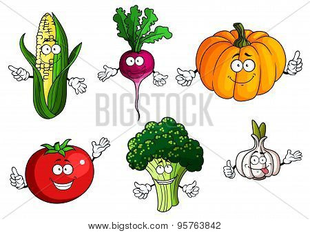 Tomato, pumpkin, broccoli, corn, radish and garlic