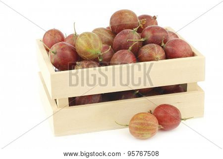 gooseberries (Ribes uva-crispa) in a wooden box on a white background