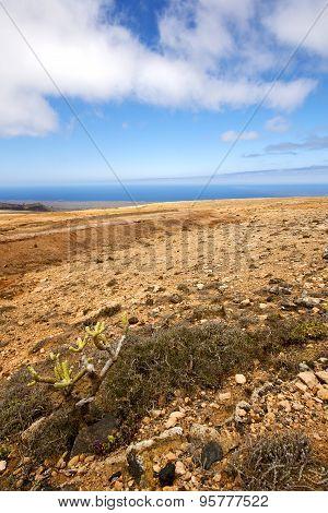 Spain Volcanic Timanfaya  Rock Stone   Volcanes Lanzarote
