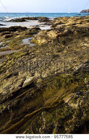In Lanzarote  Spain Musk Pond Yacht Boat Coastline And Summer