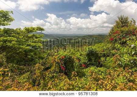 Caribbean beach on the northern coast of Jamaica