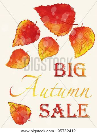 Autumn Sale poster.