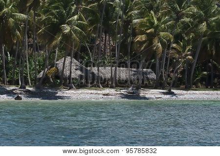 Green Getaway Exotic Paradise, Samana, Dominica