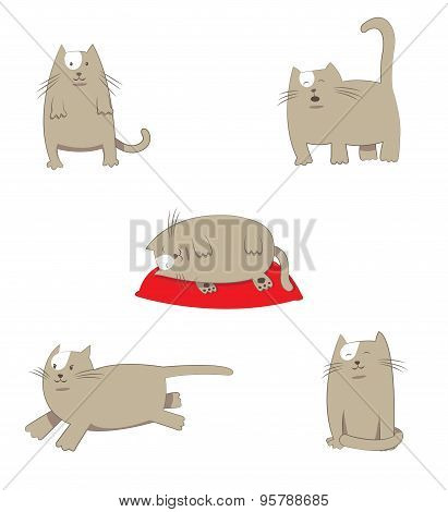 Funny stylized cartoon grey Cat in different poses and situations