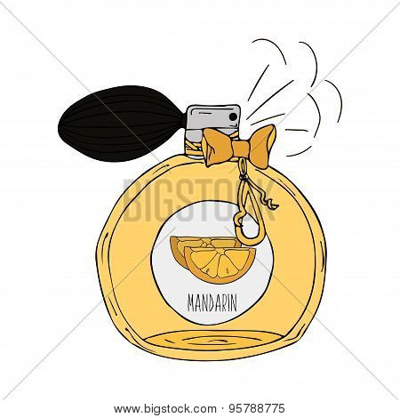 Hand Drawn  illustration of a perfume bottle with the scent of Mandarin