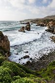 pic of foreground  - beautiful scene of the California coast with its classic dramatic coastline lined with rocks and cliffs and spring green plants in the foreground - JPG