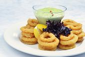 picture of souse  - Fried onion rings with green souse on plate - JPG