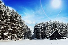 pic of cabana  - cabana on bank of frozen lake followed by winter forest - JPG