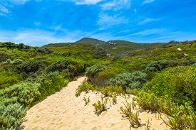 picture of promontory  - Overlook in Wilsons Promontory National Park - JPG
