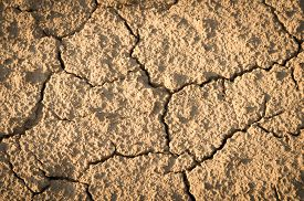 picture of drought  - dried earth on the field structure background desert drought - JPG