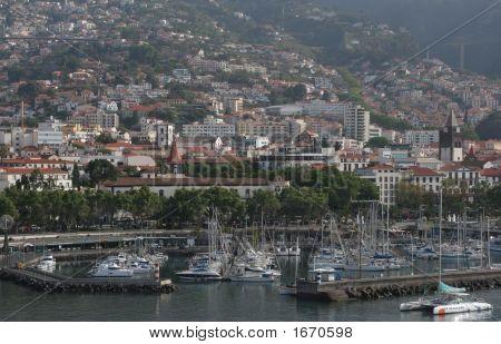 Madeira - Town And Marina