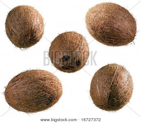 Coconuts set on a white background (isolated).