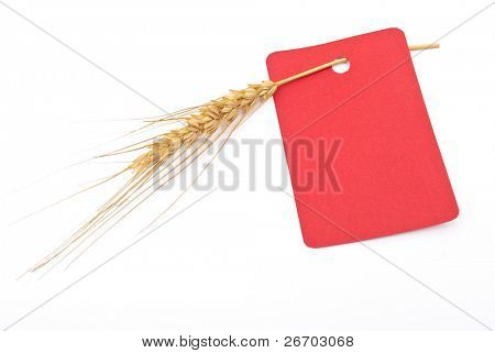 Wheat ear with red tag