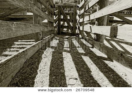 Old Wooden Cattle Chute on a Ranch