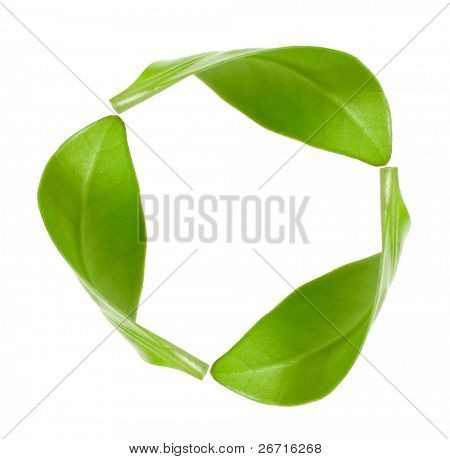 eco green energy recycling  isolated on white