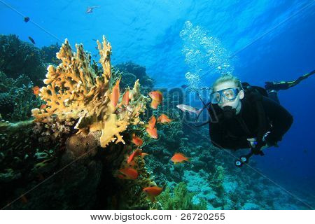 Female Scuba Diver observes tropical fish and coral