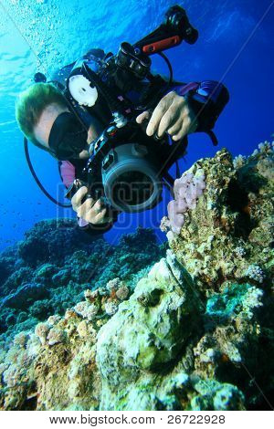 Underwater photographer lines up a macro shot of a scorpionfish