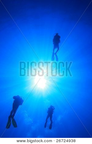 Scuba Divers silhouetted against sun in clear blue water