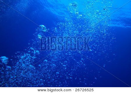 Air Bubbles in Blue Water