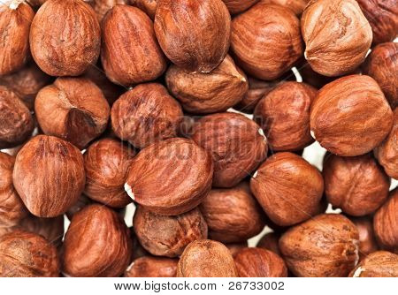 Unshelled hazel nuts isolated on white, food background