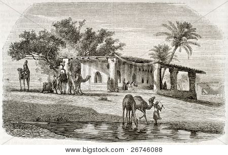 Syrian scenery old illustration. Created by Erere and Montigneul after Marilhat, published on Magasin Pittoresque, Paris, 1844