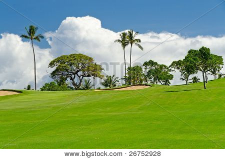 Tropical golf place with gorgeous green and beautiful white clouds over blue sky view